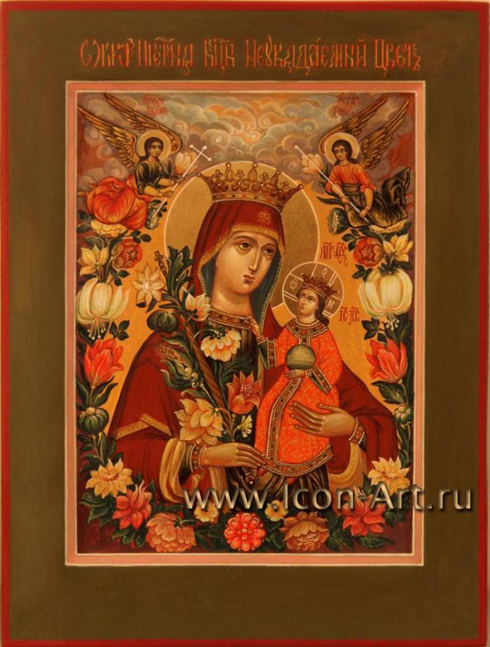 """Икона Божией Матери  """"Неувядаемый Цвет """" очень интересна по своей иконографии.  На этой иконе Богоматерь левой рукой..."""